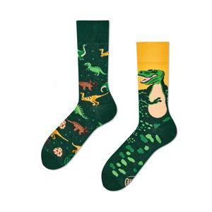 Ponožky Many Mornings The Dinosaurus,vel.35–38